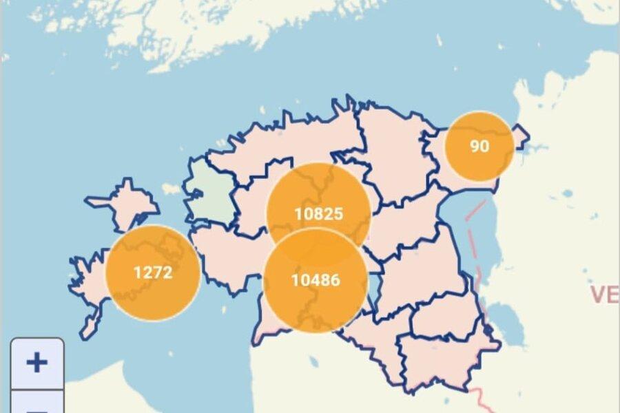 VIDEO | Pärnus kukkus puu elektriliini peale, vooluta on Eestis üle 22 000 majapidamise