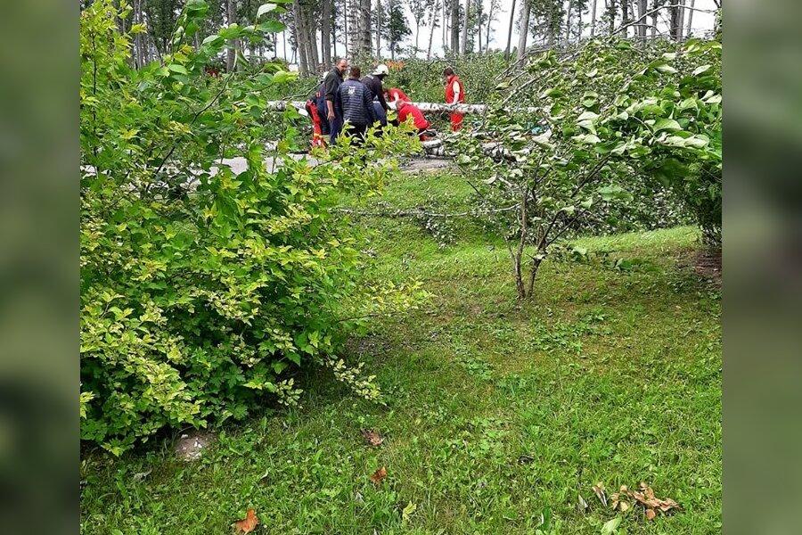 VIDEO JA FOTO | Pärnumaal Valgerannas jäid tormi tõttu murdunud puu alla kaks inimest