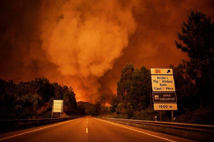 Украинцев среди жертв лесных пожаров вПортугалии нет— МИД