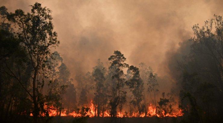 VIDEO | Ulatuslikud metsapõlengud ähvardavad Austraalia ralli ära jätta