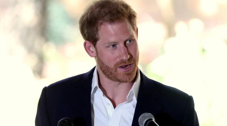 Tulemas on midagi põnevat! Ed Sheeran käis prints Harryl külas: nagu vaataks peeglisse