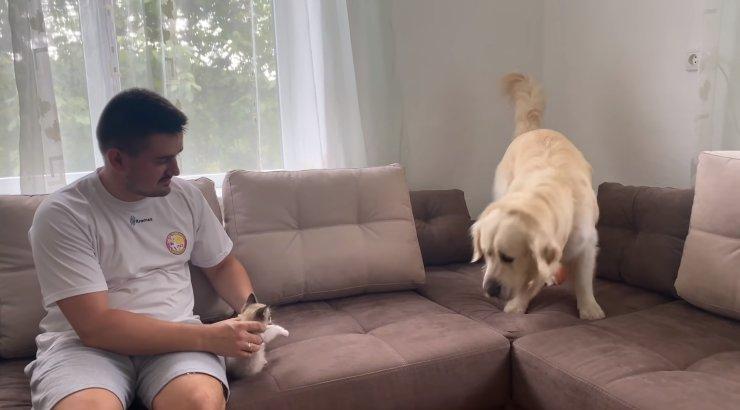 LÕBUS VIDEO