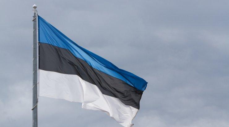a2a81a8ae4f HOMME DELFI TV-s | Otseülekanne Eesti lipu 135. aastapäeva tähistamiselt  ERMis