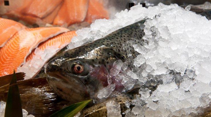 Listeeriabakterit pelgavad skandinaavlased on lepinguid üles öelnud