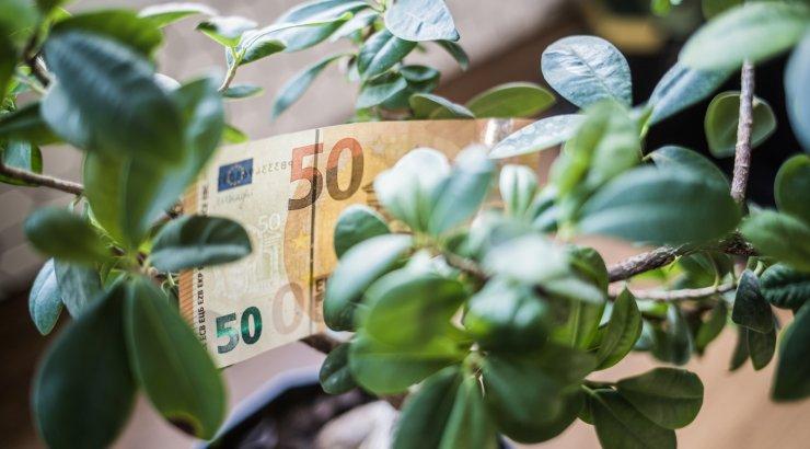 В Беларуси повышаются трудовые пенсии с 1 февраля
