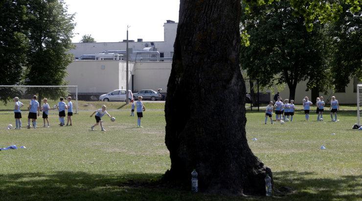 4493d6d40fb Reuters: 15-meetrine tammepuu keset jalgpalliväljakut, mida Ronaldinho  teeks? - Sport