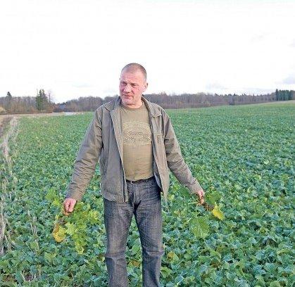 Ka suurpõllumajandus võib keskkonda säästa