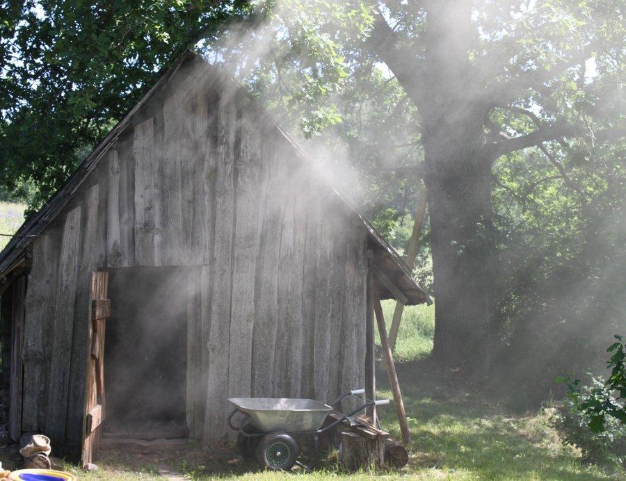 Saunafilme