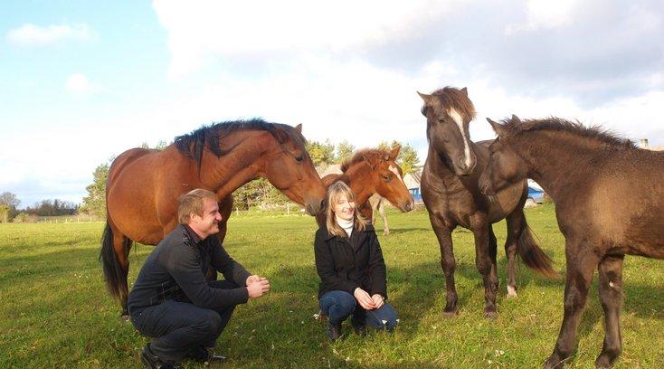 Eesti majatehas jagab Soomes tasuta hobuseid: