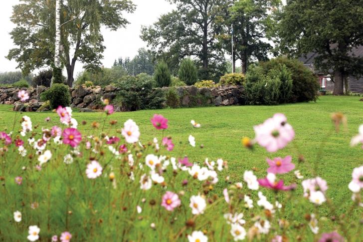 7faca193aab Pikaaegse aednikutöö tulemusel on aias nii kauneid vaateid kui ka põnevaid  liike ja sorte.