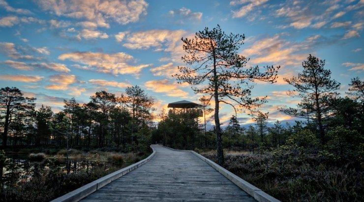 OTSEPILT | Eesti seiklejad ja matkategelased jagavad põnevaid kogemusi oma rännakutest