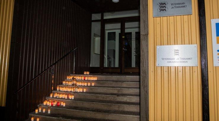 FOTOD | VTA trepi peale toodi M.V Wooli kalavabriku mälestuseks küünlad