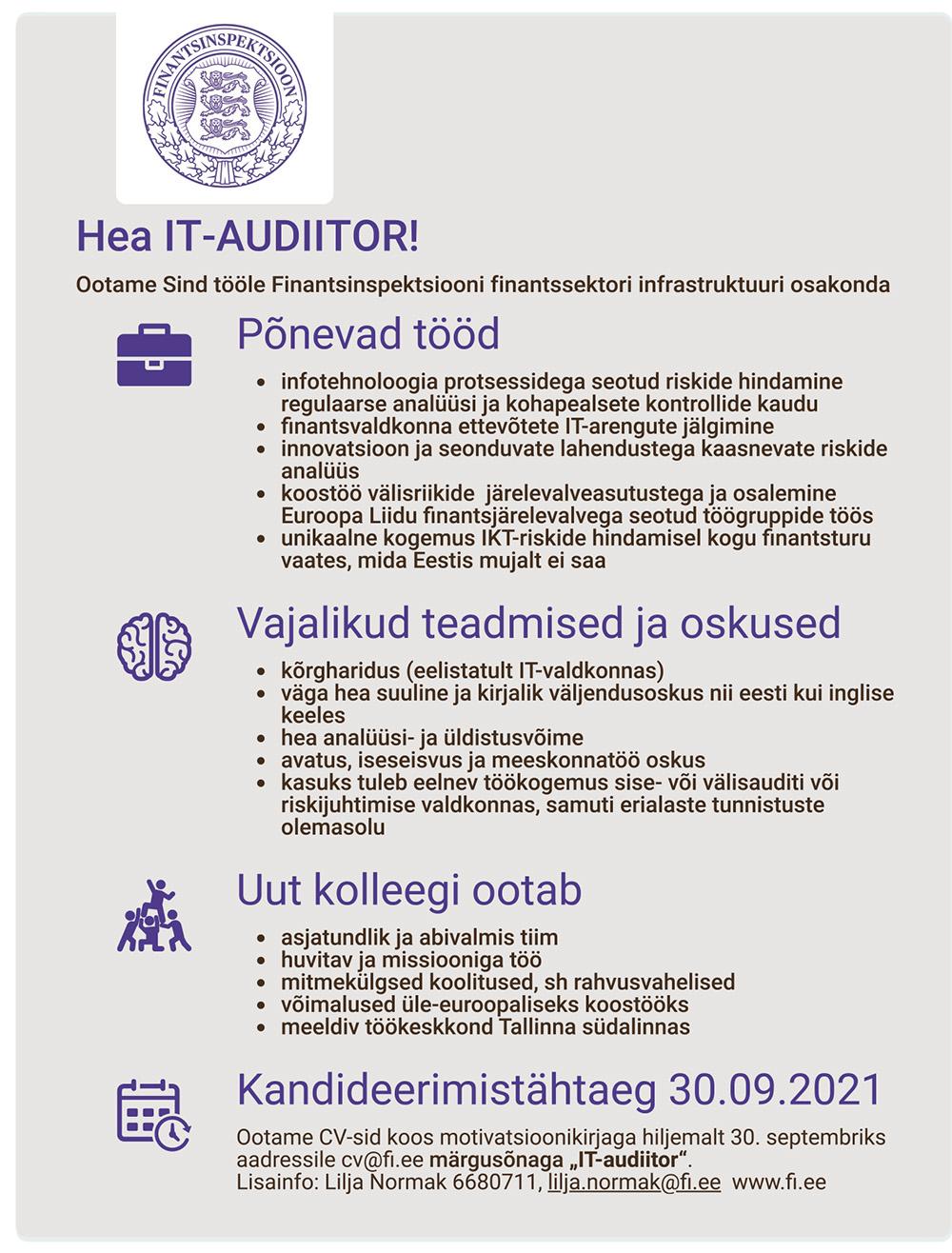 IT-AUDIITOR