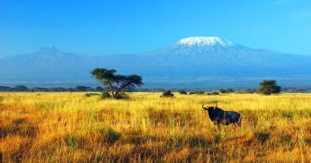 """Kilimanjaro vallutamine. Mägimatk Aafrika """"katusele"""""""