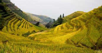 Jalgrattamatk Hiinas. Riisiterrassidelt karstimägedele
